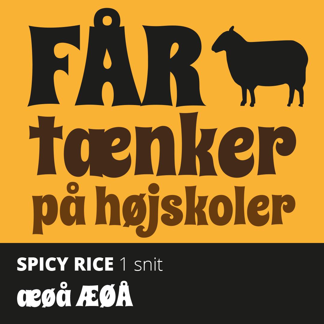 Skriftprøve på Spicy Rice font med æ, ø og å.