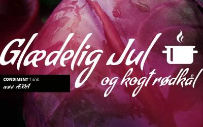 10 gratis skrifter med ÆØÅ